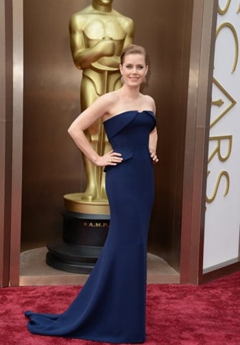 Amy Adams in Gucci Premiere at the 2014 Oscars. You can't imagine its price.